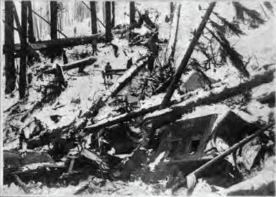 Wellington, WA 1910 avalanche debris field